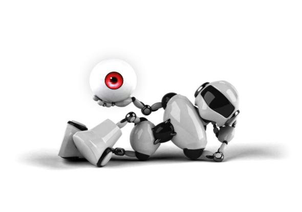 Eye of the robot - Vision camera SensoPart